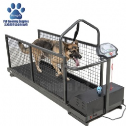 Canine Land LiftingTreadmill