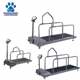 Canine Land Treadmill